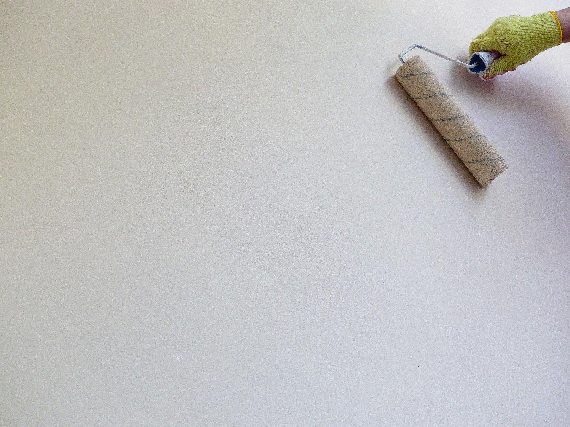 glatte Wand wird mit Farbrolle weiß gestrichen